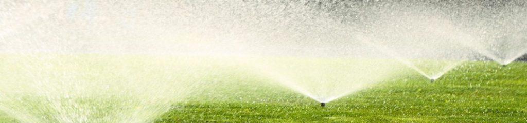 garden-sprinkler-on-the-green-71213047